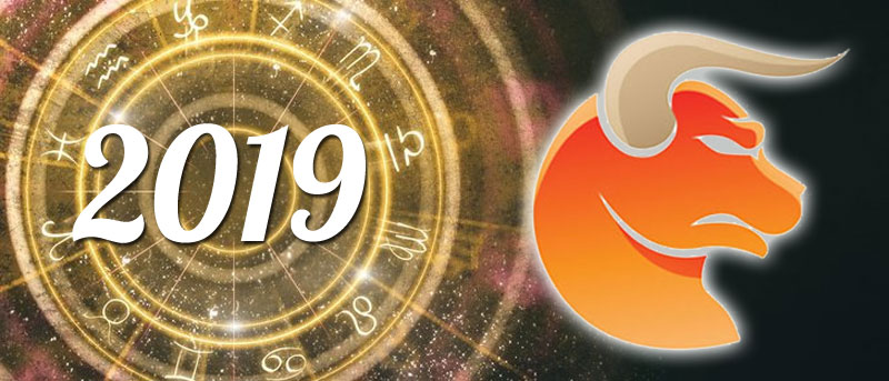 Stier 2019 horoscope