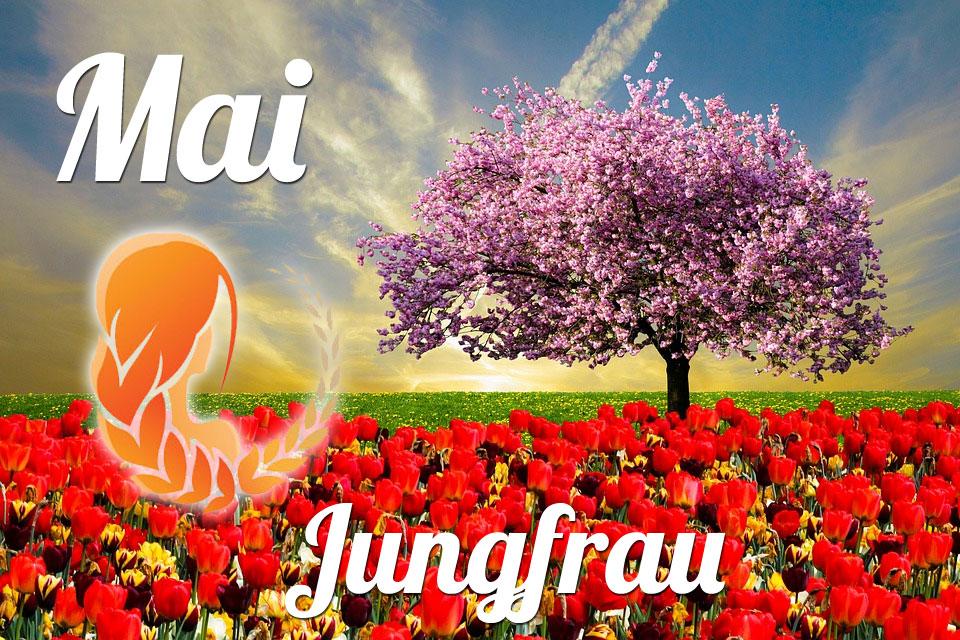 Jungfrau Mai 2020