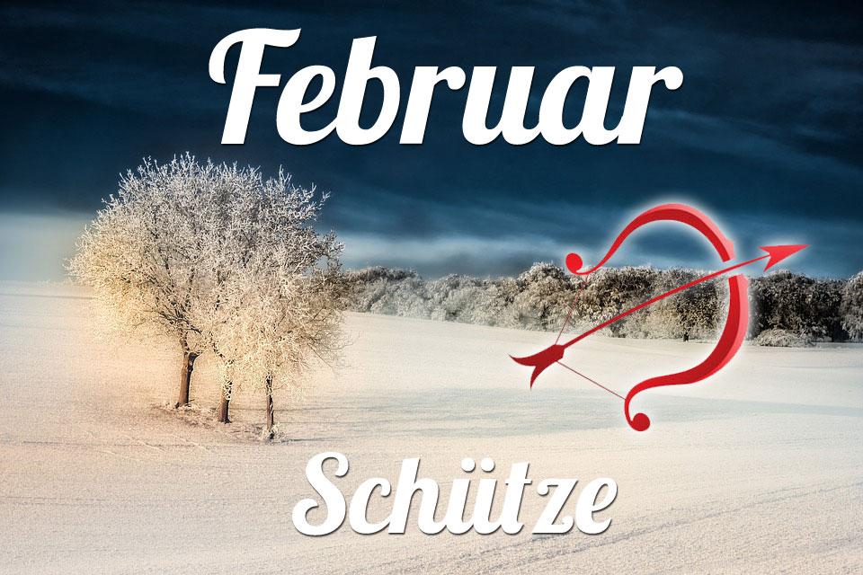 Schütze horoskop Februar