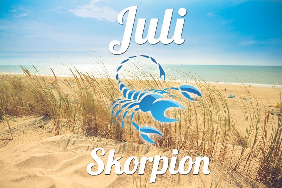 Skorpion Juli 2020
