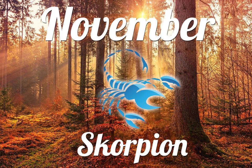 Skorpion horoskop November