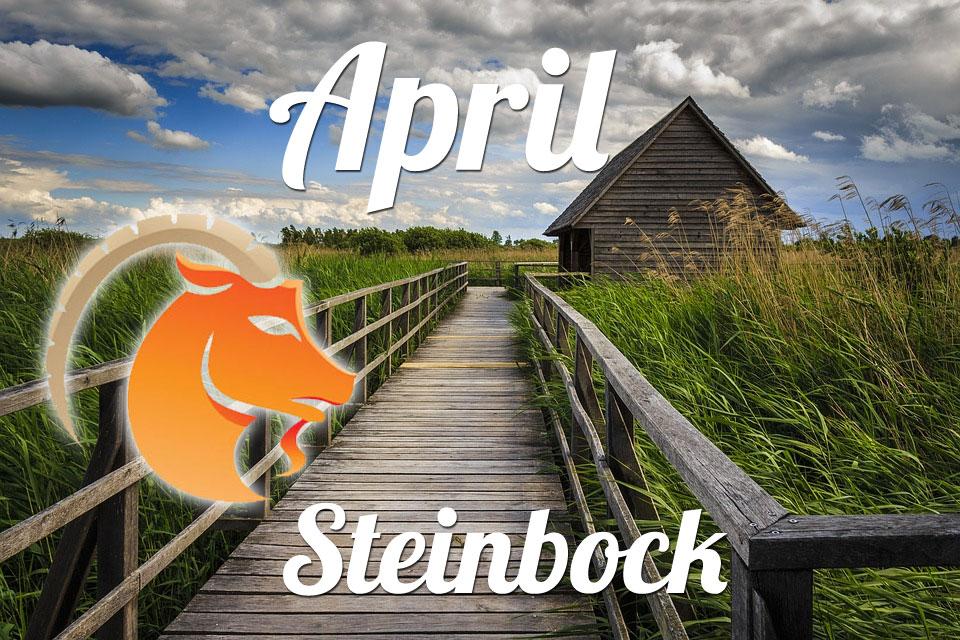 Steinbock April 2020