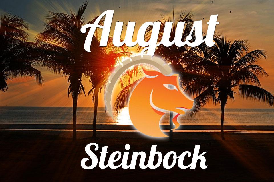 Steinbock August 2020