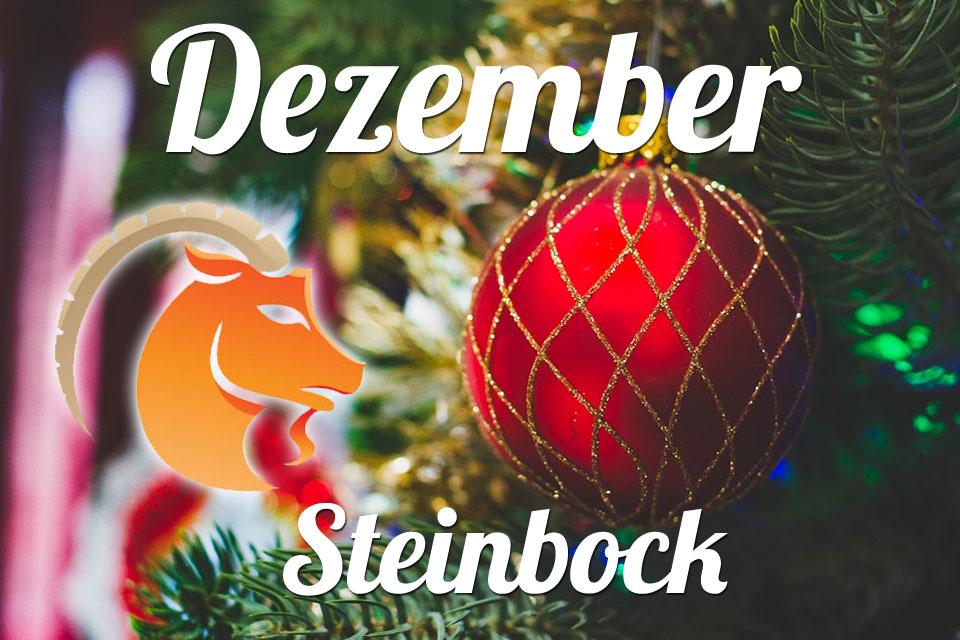 Steinbock Dezember 2020