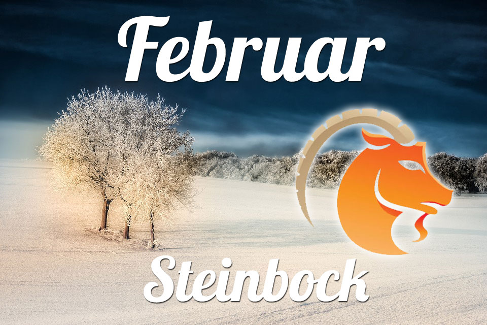 Steinbock Februar 2020
