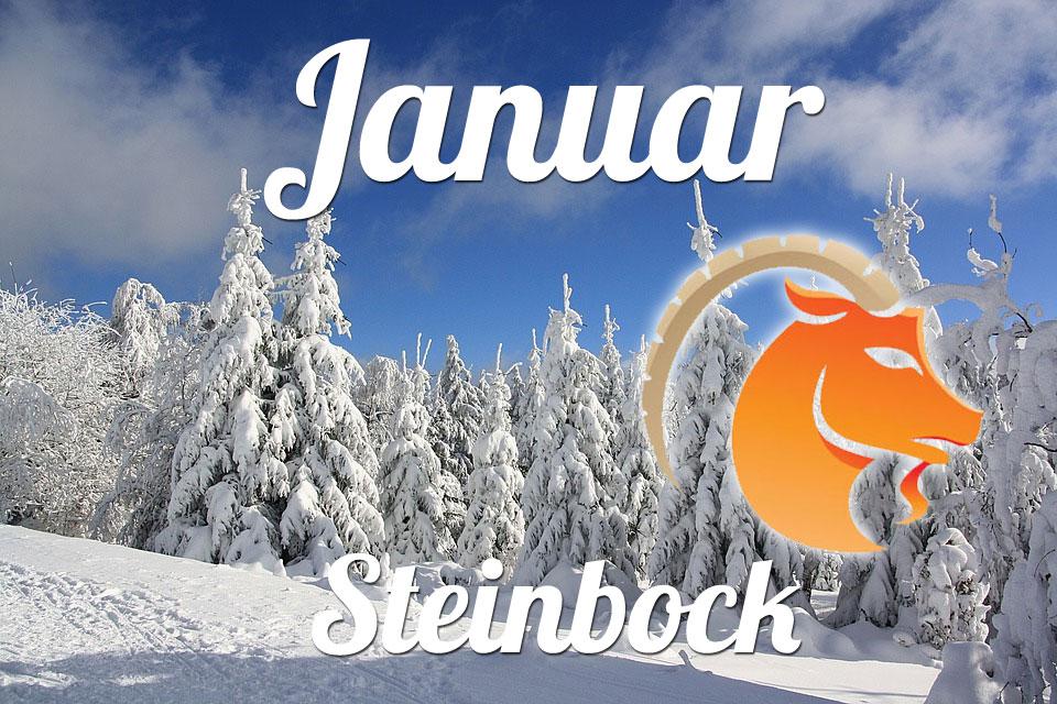 Steinbock Januar 2020