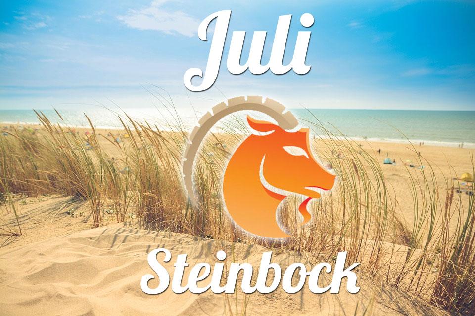 Steinbock Juli 2020