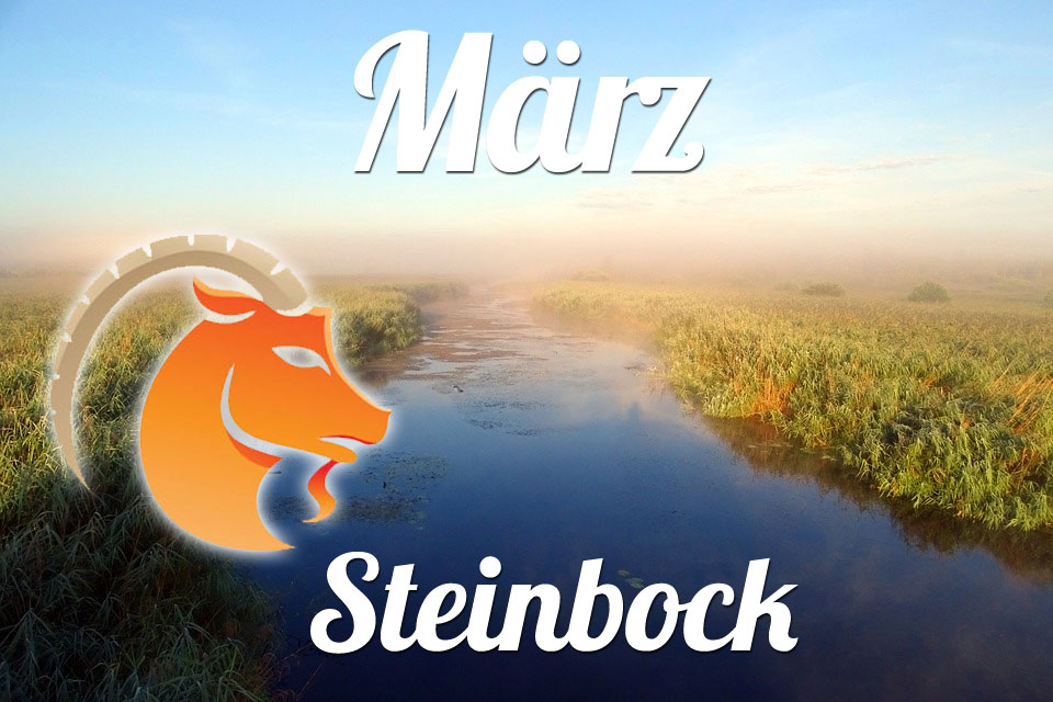Steinbock März 2020