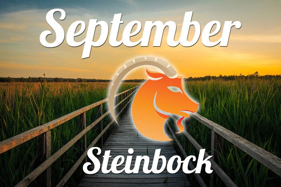 Steinbock September 2020