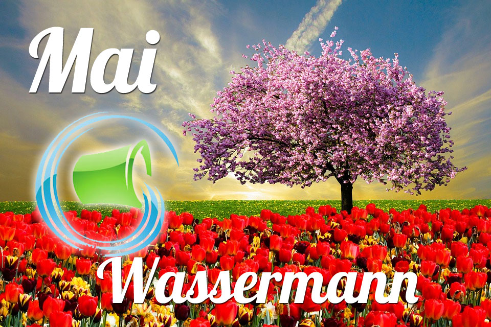 Wassermann Mai 2019