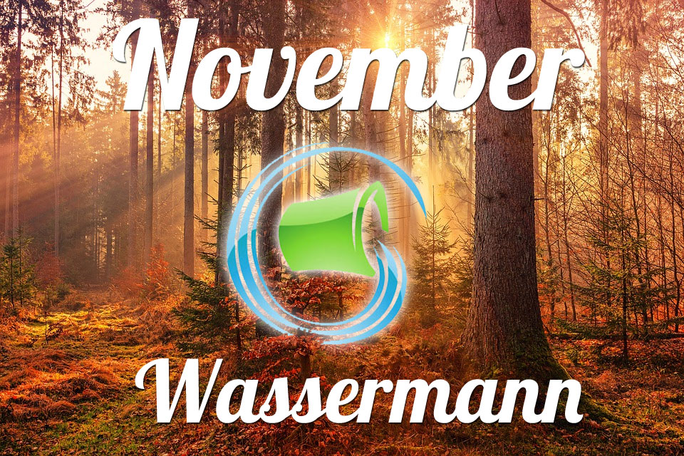Wassermann November 2019