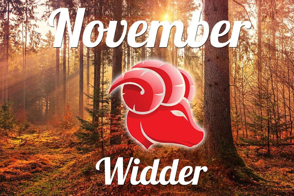 Widder November 2020