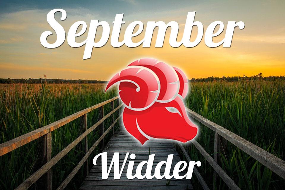 Widder September 2020