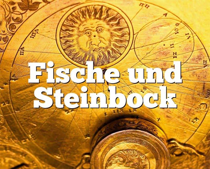 Fische Frau Und Steinbock Mann