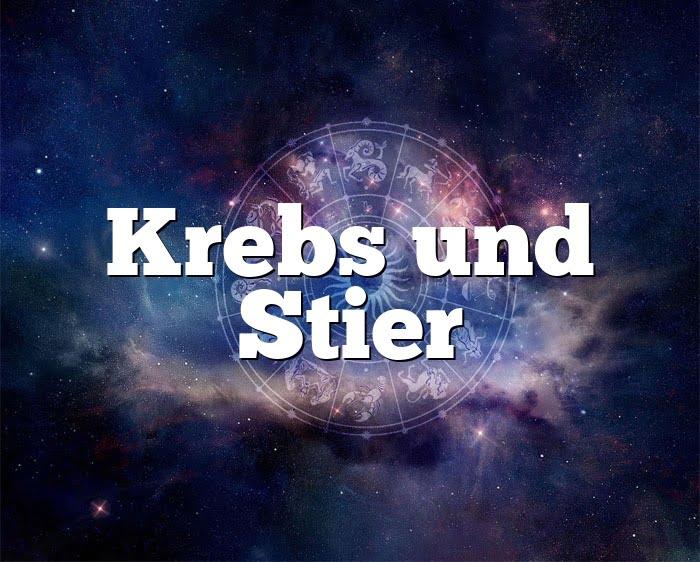 Krebs Stier Partnerhoroskop - Liebe