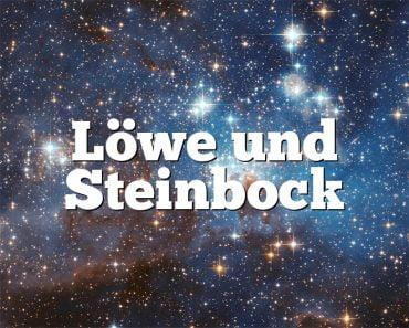 Löwe und Steinbock