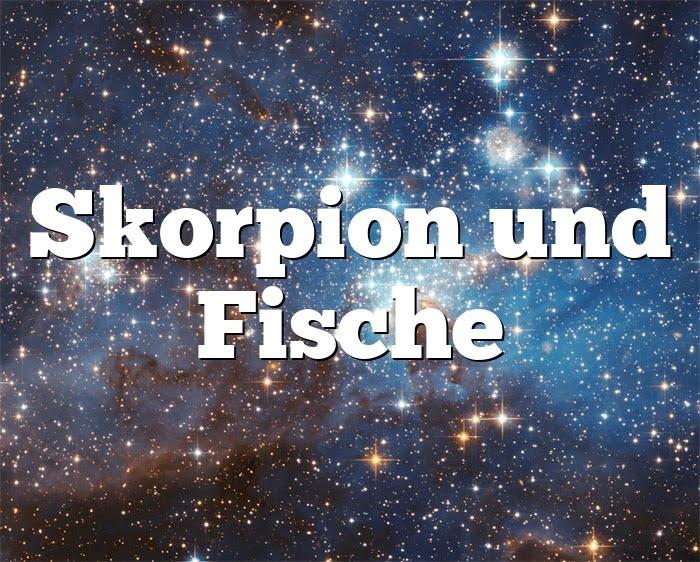 Sternzeichen fische frau und skorpion mann