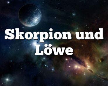 Skorpion und Löwe