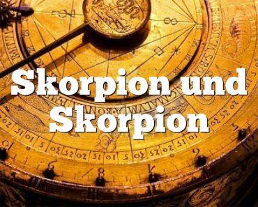 Skorpion und Skorpion