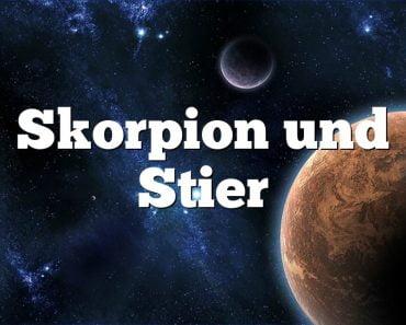 Skorpion und Stier