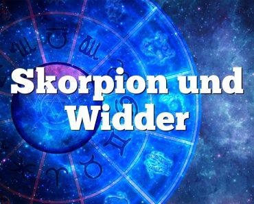 Skorpion und Widder