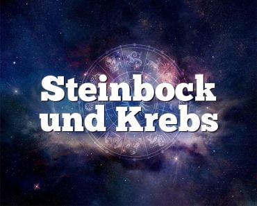 Steinbock und Krebs