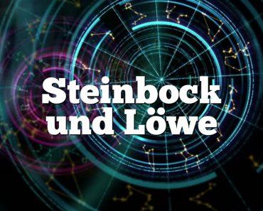 Steinbock und Löwe