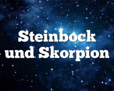Steinbock und Skorpion