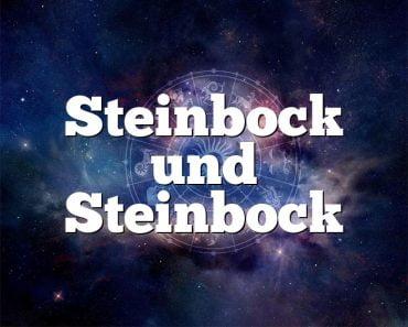 Steinbock und Steinbock
