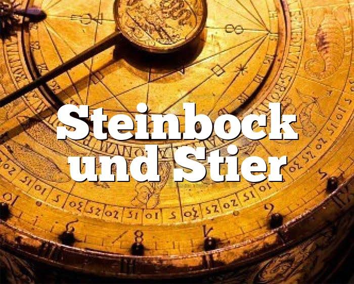 Steinbock Stier Partnerhoroskop - Liebe