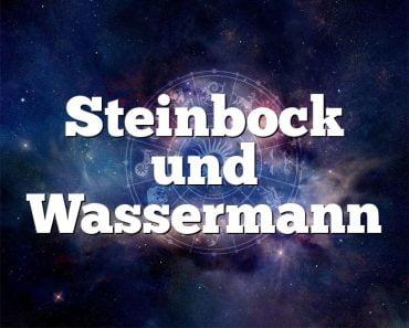 Steinbock und Wassermann