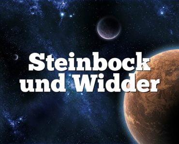 Steinbock und Widder