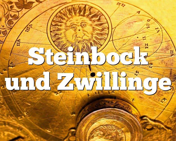 Steinbock Zwillinge Partnerhoroskop - Liebe