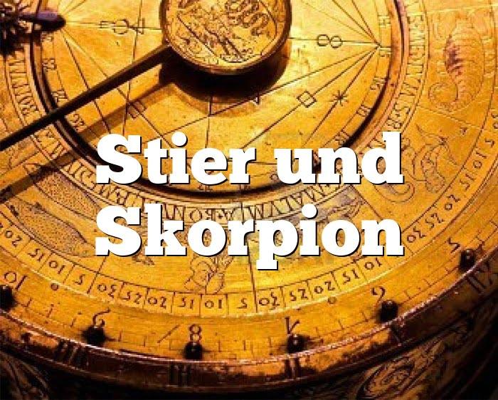 Stier Skorpion Partnerhoroskop - Liebe