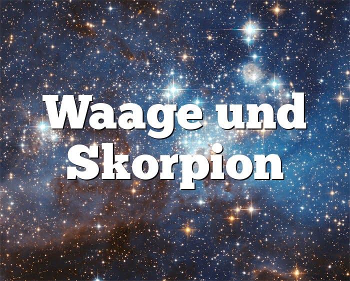 Waage Und Skorpion Passt Das