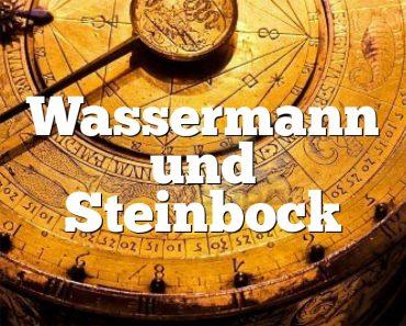 Wassermann und Steinbock