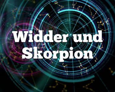 Widder und Skorpion