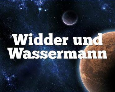 Widder und Wassermann